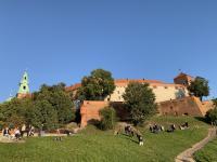 08_Krakau Wawel