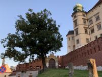 09_Krakau Wawel